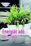 Irmgard Brottrager - Energi�t ad� szoban�v�nyek