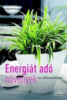 Irmgard Brottrager - Energiát adó szobanövények