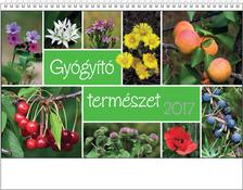 Kalendart Kiad� - T058 GY�GY�T� TERM�SZET