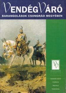 P�lfy Katalin - Barangol�sok Csongr�d megy�ben