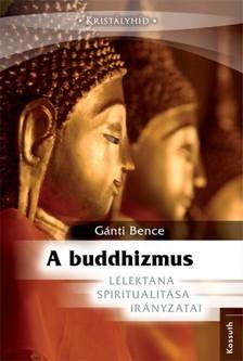 Gánti Bence - A buddhizmus [eKönyv: epub, mobi]