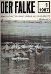 - Der Falke 1987 [antikvár]