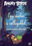 TAPANI BAGGE, GLENN DAKIN, NIINA NAKALAHTI, JANNE  - Angry Birds - Egy malac a csillagokb�l �s m�s madaras t�rt�netek...
