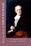 Murat Ukray William Blake, - Poems of William Blake [eK�nyv: epub,  mobi]