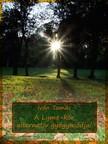 Tamás Iván - A Lyme-kór alternatív gyógymódjai (Második kiadás) [eKönyv: epub, mobi]