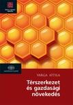 Varga Attila - Térszerkezet és gazdasági növekedés  [eKönyv: epub,  mobi]