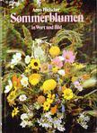 Arno Hielscher - Sommerblumen in Wort und Bild [antikv�r]