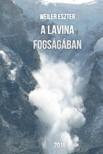 Eszter Weiler - A lavina fogs�g�ban [eK�nyv: epub,  mobi]
