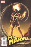 Lopresti, Aaron, Reed, Brian - Ms. Marvel No. 24 [antikv�r]