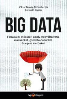 Viktor Mayer-Sch�nberger - Kenneth Cukier - Big data