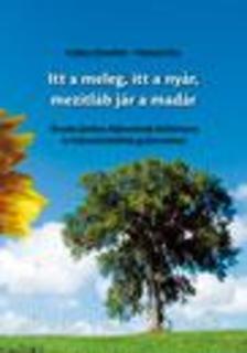Lukács Józsefné - Ferencz Éva - Itt a meleg, itt a nyár, mezítláb jár a madár - Óvodai játékos fejlesztések kézikönyve és fejlesztő játékok gyűjteménye