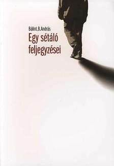 B�LINT B. ANDR�S - EGY S�T�L� FELJEGYZ�SEI