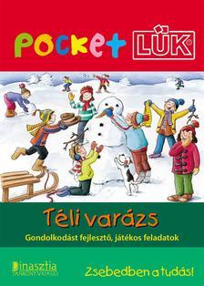 LDI908 - Téli varázs - Pocket LÜK