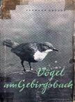 Creutz,Gerhard - Vögel am Gebirgsbach [antikvár]