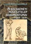 S�megi Gy�rgy - A Kecskem�ti M�v�sztelep dokumentumai (1909-1919)
