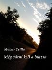 MOLNÁR CSILLA - Még várni kell a buszra [eKönyv: pdf,  epub,  mobi]