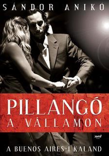 S�ndor Anik� - Pillang� a v�llamon - Buenos Aires-i kaland