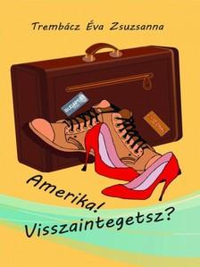 Éva Zsuzsa Trembácz - Amerika! Visszaintegetsz? [eKönyv: epub, mobi]