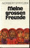 Stryczek,Norbert - Meine grossen Freunde [antikvár]