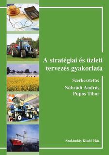 356579 - A stratégiai és üzleti tervezés gyakorlata