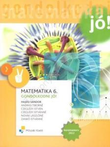 HAJDU S�NDOR - MK-4198-8/�J MATEMATIKA 6. GONDOLKODNI J�!