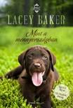 Lacey Baker - Mint a mennyorsz�gban [eK�nyv: epub, mobi]