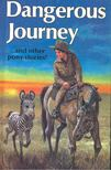 SIMMONDS, ROSEMARY - Dangerous Journey and Other Pony Stories [antikvár]