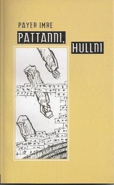 Payer Imre - Payer Imre: Pattanni, hullni