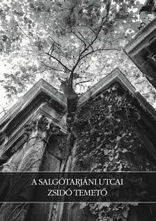 T�th Vilmos - A Salg�tarj�ni utcai zsid� temet�