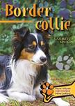 - BORDER COLLIE