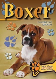 - BOXER
