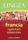 - Francia nyelvtani áttekintés