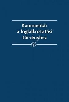 dr. Boncz Tünde dr. Funtig Zoltán - Kommentár a foglalkoztatási törvényhez [eKönyv: epub, mobi]