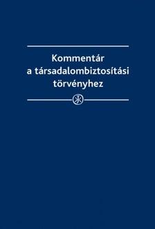 Kiss S�ndor - Komment�r a t�rsadalombiztos�t�si t�rv�nyhez [eK�nyv: epub, mobi]