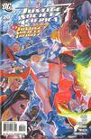 Eaglesham, Dale, Geoff Johns, Alex Ross - Justice Society of America 20. [antikv�r]