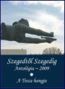 Tandi Lajos (szerk.),  Sonkodi Rita (ill.) - SZEGEDT�L SZEGEDIG ANTOL�GIA 2009