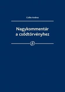 Andrea dr. Cs�ke - Nagykomment�r a cs�dt�rv�nyhez  [eK�nyv: epub, mobi]