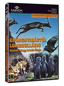 HOMOKI-NAGY ISTV�N - GY�NGYVIR�GT�L LOMBHULL�SIG