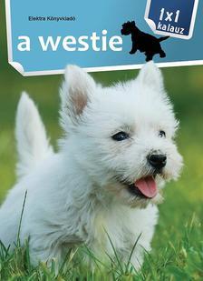 - 1x1 - A westie