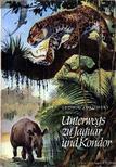 Zukowsky, Ludwig - Unterwegs zu Jaguar und Kondor [antikvár]
