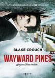 Blake Crouch - Wayward Pines
