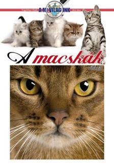 Bíró Sára - A macskák világa