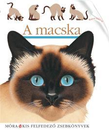 - A macska - Kis felfedez�