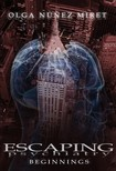 Olga N�nez Miret, Express Editing Solutions, Ernesto Valdes - Escaping Psychiatry. Beginnings [eK�nyv: epub,  mobi]