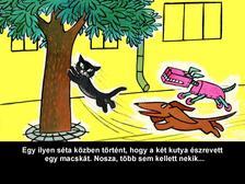 Macskássy Gyula, Várnai György - Dia Dani és Dini kutya