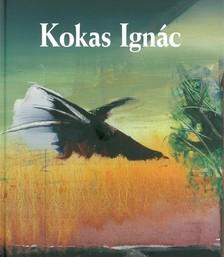 Rózsa Gyula - Kokas Ignác [eKönyv: epub, mobi]