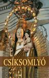 T�csi Zolt�n - Illy�s Csaba - Cs�ksomly�