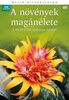 - N�V�NYEK MAG�N�LETE - D�SZDOBOZ - 3 -