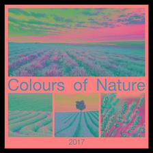 SmartCalendart Kft. - SG Napt�r Colours of Nature 2017 42x42cm