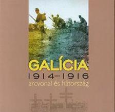 Sebesty�n Mih�ly - Gal�cia - 1914-1916 arcvonal �s h�torsz�g